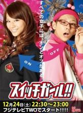 Switch Girl (2011) afişi