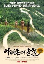 Amazon'un Gözyaşları (2010) afişi