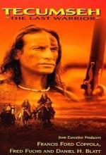 Tecumsch:  The Last Warrior (1995) afişi