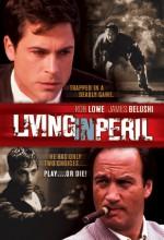 Tehlikede Yaşamak (1997) afişi