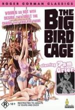 The Big Bird Cage (1972) afişi