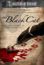 The Black Cat (masters Of Horror) (2007) afişi