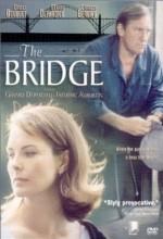 The Bridge(ı)
