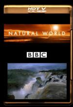 The Falls Of ıguaçu (2006) afişi