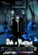 The Ghost In The Swamp (2006) afişi