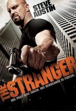 Tehlikeli Yabancı (2010) afişi