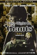 They Might Be Giants (1971) afişi