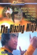 The Blazing Ninja (1973) afişi