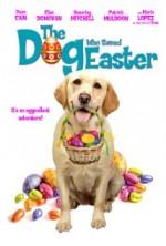 Paskalyayı Kurtaran Köpek (2014) afişi