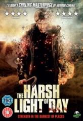 The Harsh Light of Day (2012) afişi
