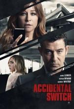 Accidental Switch (2016) afişi