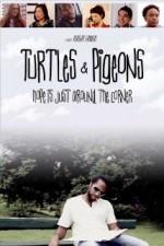 Turtles & Pigeons (2014) afişi