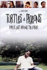 Turtles & Pigeons