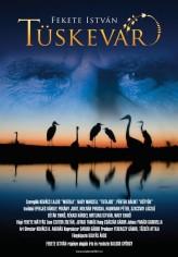 Tüskevár (2012) afişi