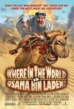 Usame Bin Ladin Nerede ? (2008) afişi