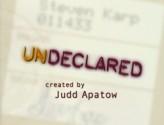 Undeclared (2001) afişi