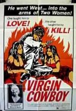 Virgin Cowboy (1975) afişi