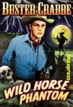 Wild Horse Phantom (1944) afişi