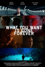 What You Want Is Gone Forever (2014) afişi