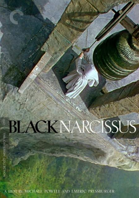 Siyah Nergis