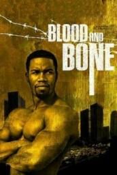 Kan ve Kemik