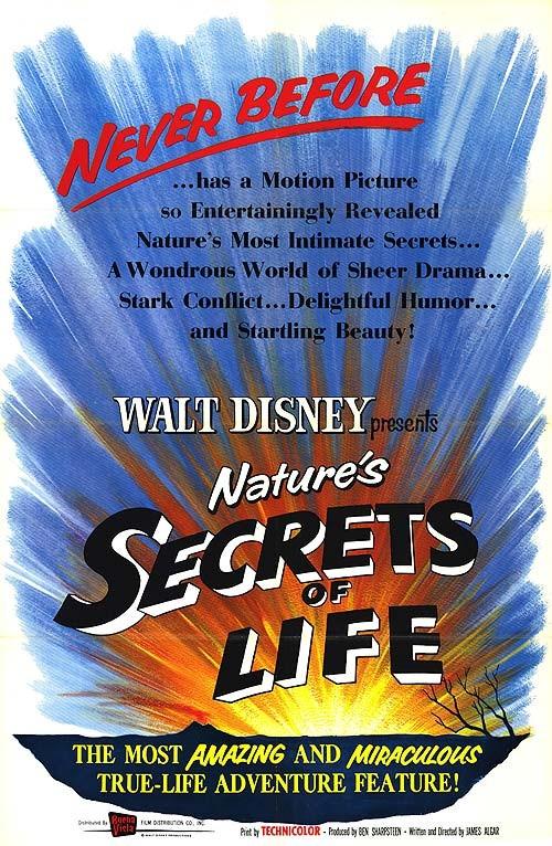 Yaşam Sırları