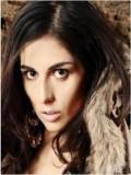 Merced Arcei profil resmi