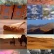 Ipek Yolunun Uygarlıkları Resimleri