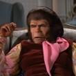 Maymunlar Cehenneminden Kaçış Resimleri