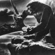 The Son Of Kong Resimleri